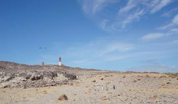 eilandtoren.jpg
