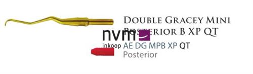 AMERICAN EAGLE DOUBLE GRACEY QUICK TIP MINI POSTERIOR B NR.AEDGMPBXPQT