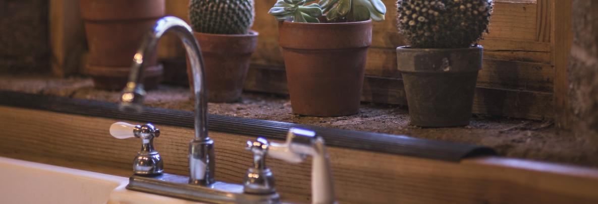 robinet, maison, plante