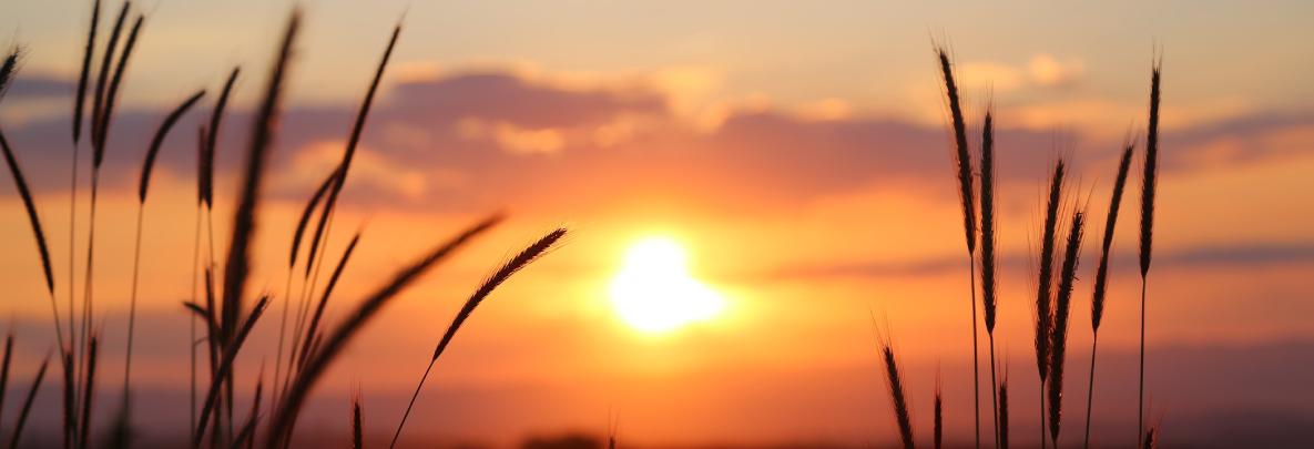 energie solaire, thermique, soleil