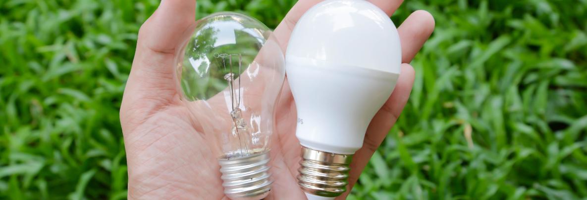 ampoule led lumière