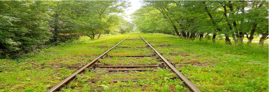 transport vert nature