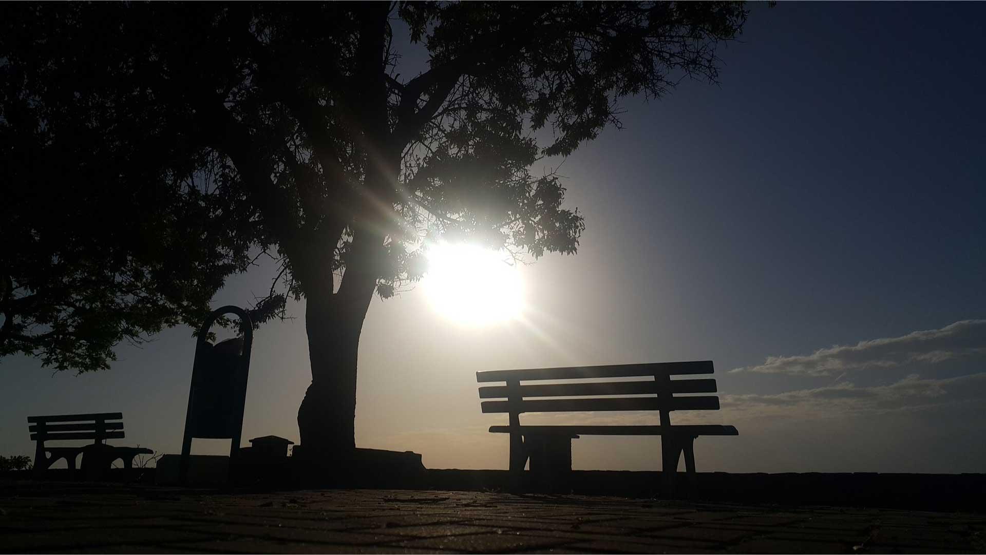 environnement paysage soleil