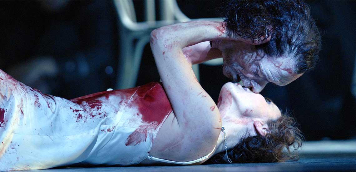 Opera Passion image