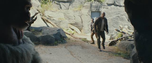 Rampage - Furia animale_Dwayne Johnson_foto dal film 6