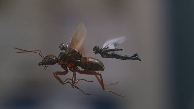Ant-Man and the Wasp_Paul Rudd Evangeline Lilly_foto dal film 1