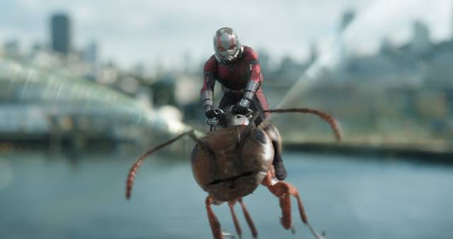 Ant-Man and the Wasp_Paul Rudd_foto dal film 5