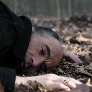L'uomo nel bosco