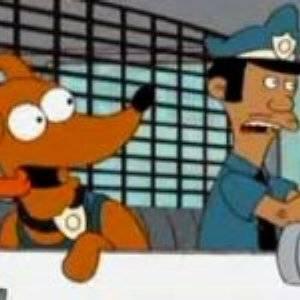 Fermati o il cane spara!