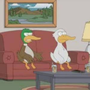 Two Ducks Watch 'Meet The Parents'