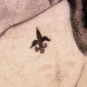 Fiore di giglio