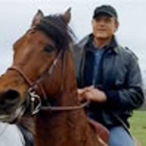 Cavallo vincente