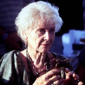Rose anziana