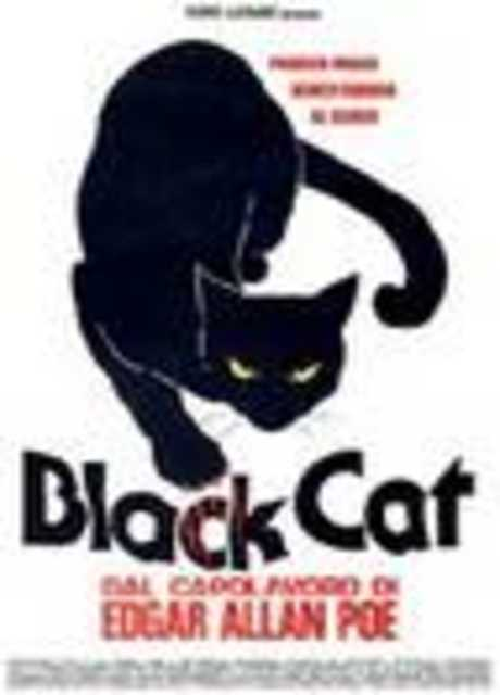 Black Cat (Gatto nero)