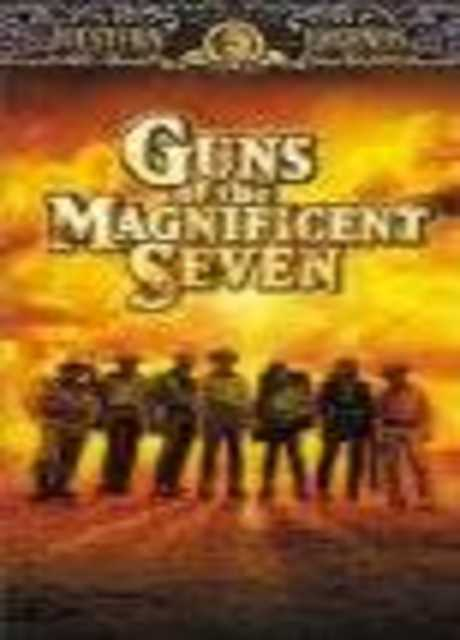 Le pistole dei magnifici sette