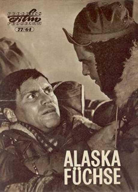 Alaskafüchse