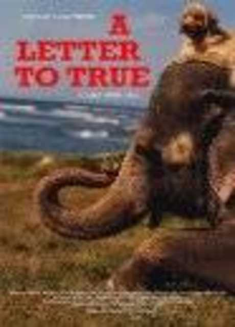 A Letter to True