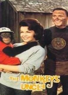 Lo zio dello scimpanzè