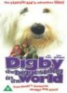 Tobia il cane più grande che ci sia