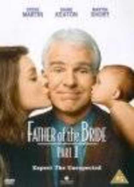Il padre della sposa 2
