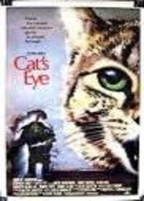 L'occhio del gatto
