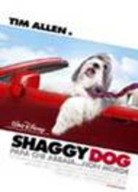 Shaggy Dog - Papà che abbaia... non morde