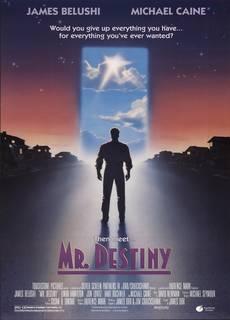 Mr. Destiny