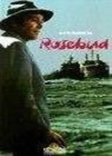 Operazione Rosebud