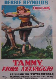 Tammy fiore selvaggio