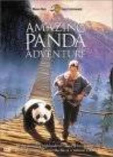 Il piccolo panda