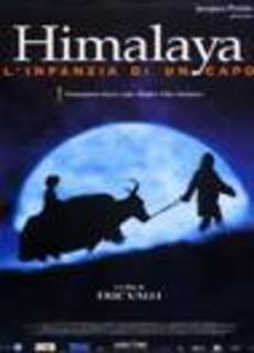 Himalaya l'enfance d'un chef