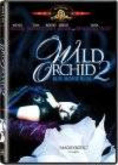 Orchidea selvaggia 2