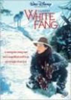Zanna bianca - Un piccolo grande lupo