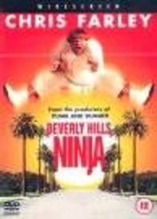 Mai dire Ninja