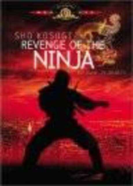 Ninja la furia umana