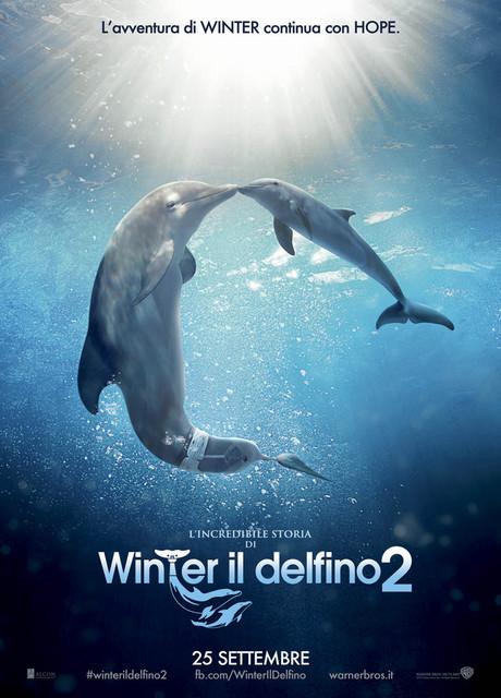 L'incredibile storia di Winter il delfino 2