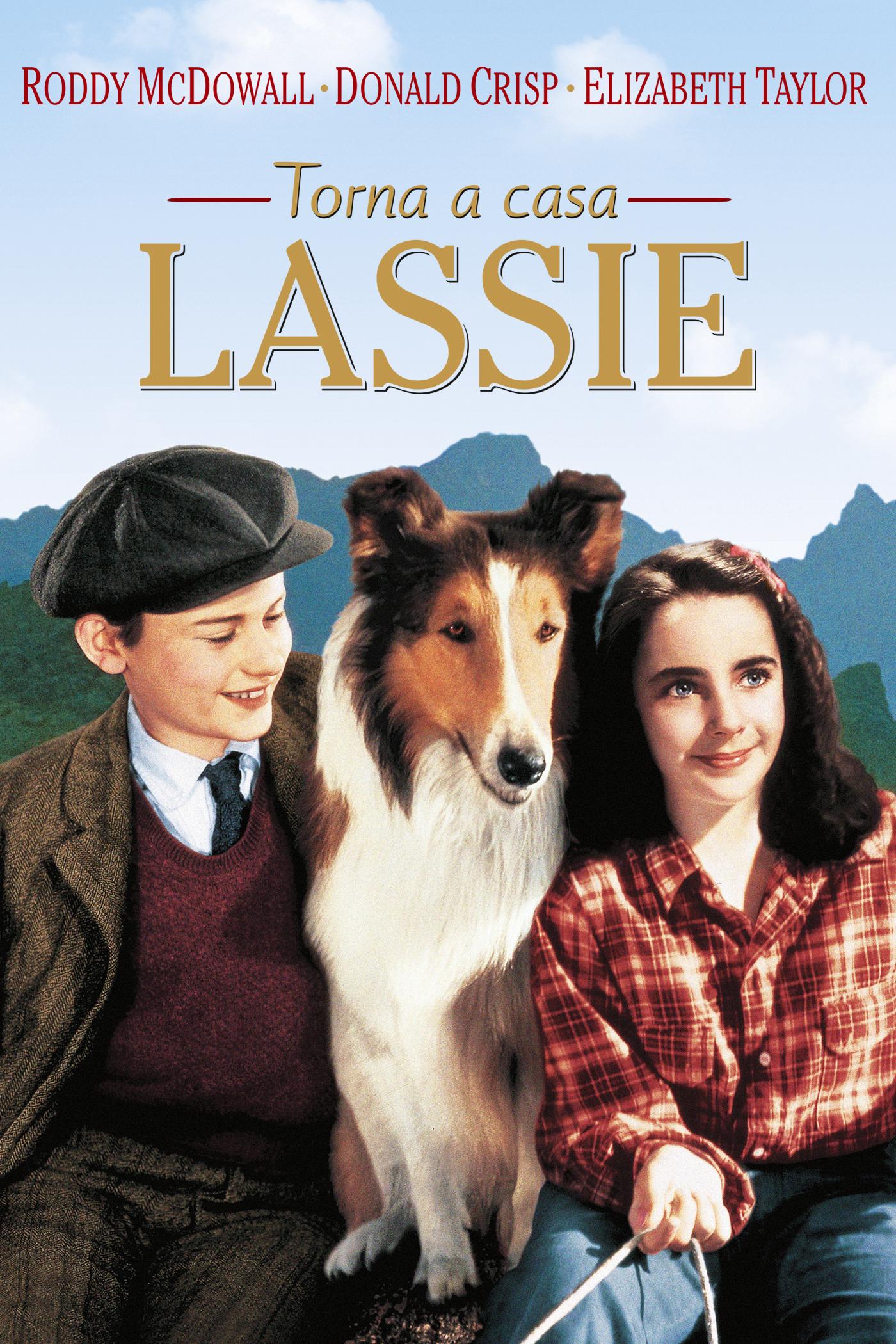 Torna a casa Lassie!