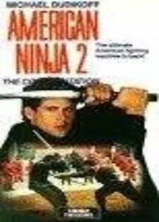 American ninja 2