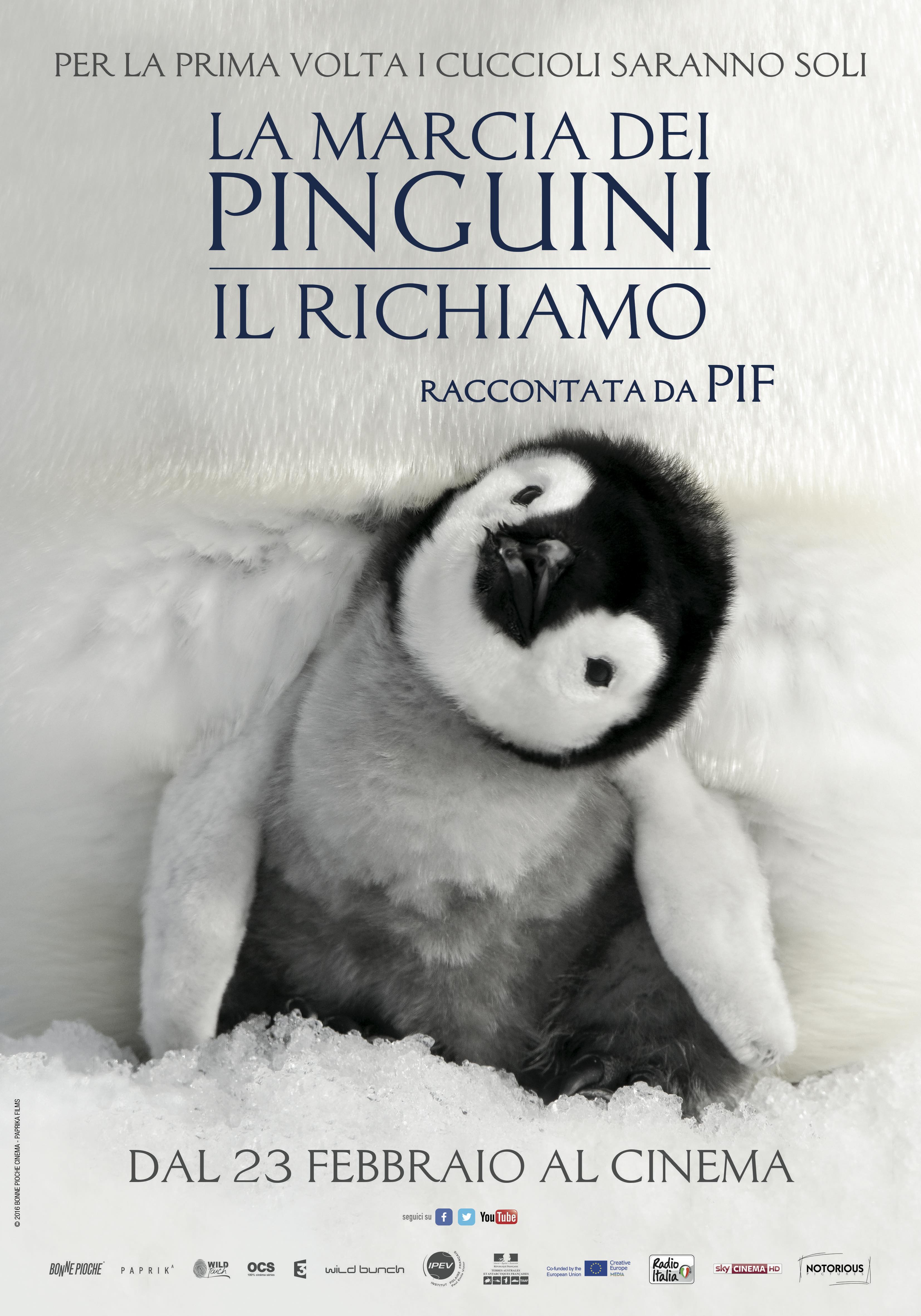 News sul film la marcia dei pinguini il richiamo screenweek for Ti richiamo