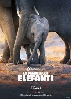 La Famiglia di Elefanti