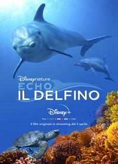 Echo, Il Delfino