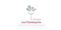 GROUPE LES FLAMBOYANTS