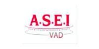 SSIAD ASEI