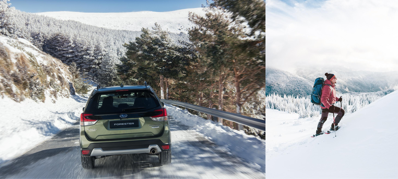 NORGESBILEN</br>Subaru Forester Hybrid 4x4