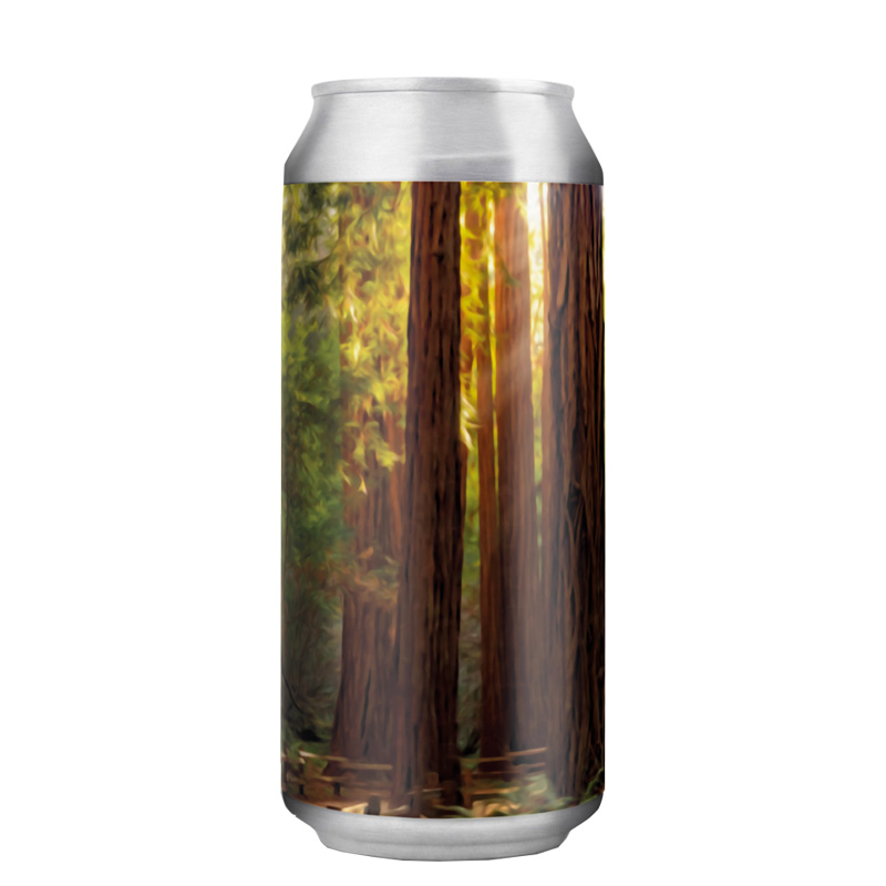 Bière Let's Go Back To California - Brasserie Alefarm