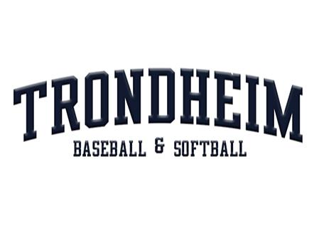 Trondheim Baseball <small>(TRO)</small> flag