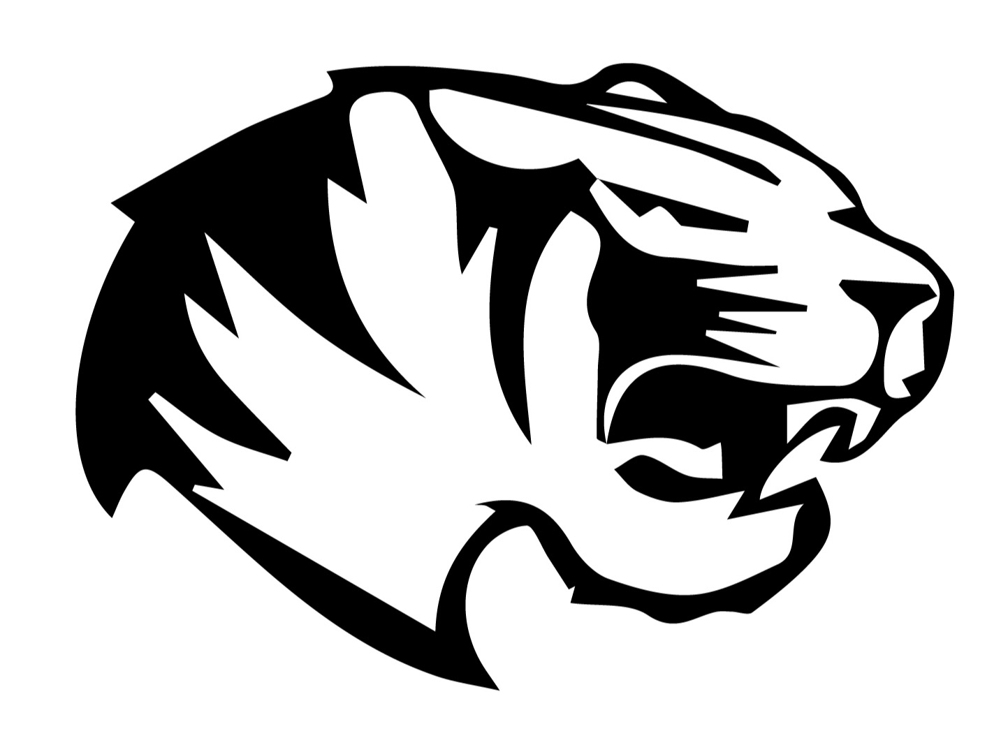 A.S.D. White Tigers A. F. B. & S. Team <small>(TIG)</small> flag