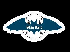 Blue Bats <small>(BB)</small> flag