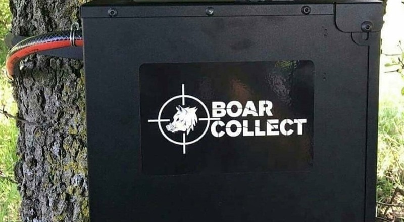 Tjärspridare Boar Collect