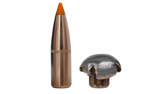 Norma 30-06 Tipstrike 11,0G (17434)